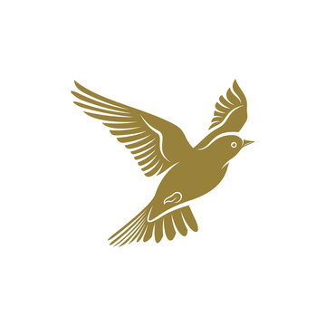 Lark bird design vector illustration, Creative Lark bird logo design concepts template, icon symbol