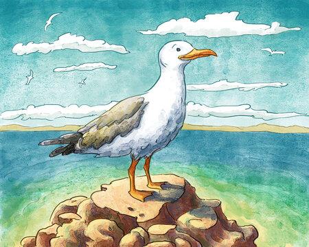 Seagull Watercolor Illustration