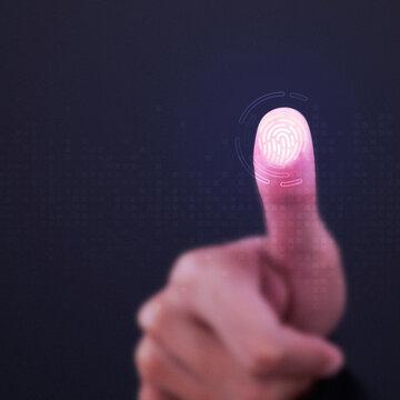 Fingerprint scanner on transparent screen