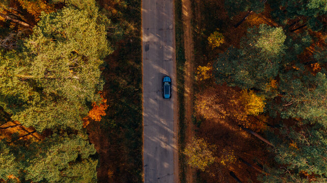 Overhead view Of a brand new blue Car Driving Through Forest road
