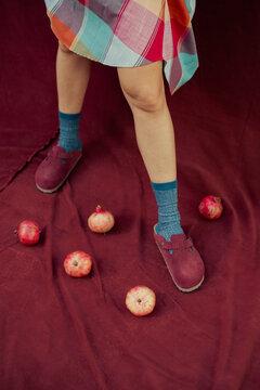 Legs, Skirt, Socks, Slippers and Pomegranates