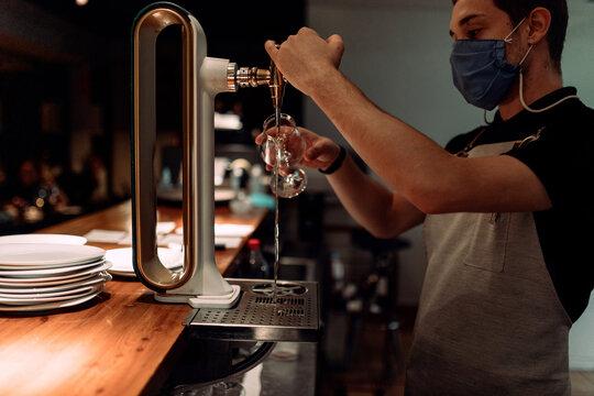 Bartender serving draft beer
