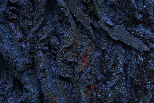 dark wood texture closeup background