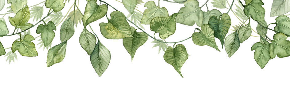 Long seamless banner with hanging ivy leaves