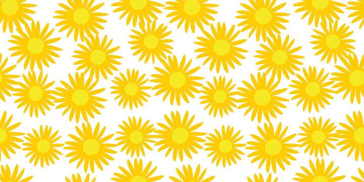 seamless background with yellow sunflowers, vector drawing, white and yellow pattern