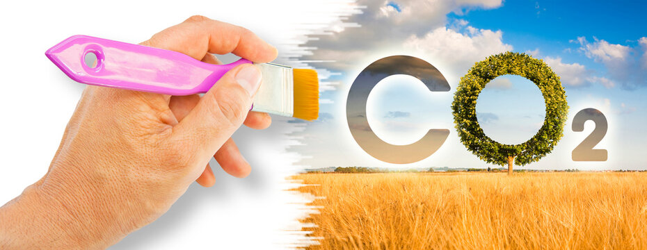 Reduction of the amount of CO2 emissions - concept image with CO2 icon text and tree shape in rural scene