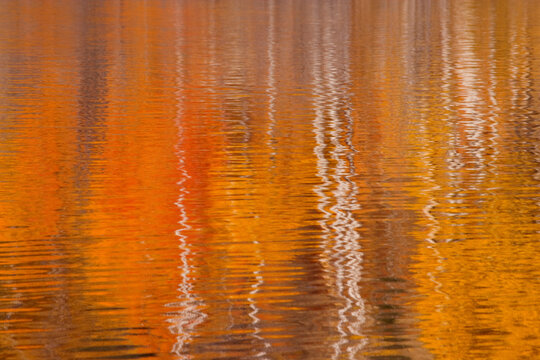 USA, Washington State, Winthrop. Autumn reflections on Beaver Pond.