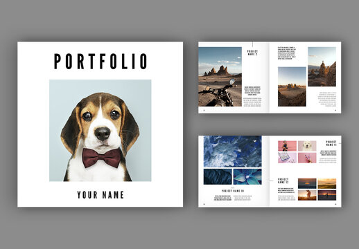 Portfolio/Lookbook Layout
