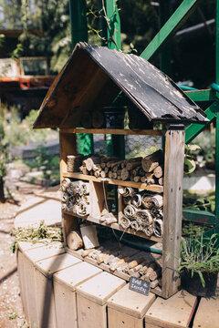 Handmade Bee Hotel In Urban Garden In Roma District, Mexico City, Mexico