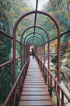 Foot Bridge Through The Mountains
