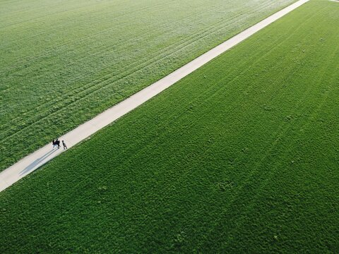 High Angle View Of Field And A Straight Way With 3 People