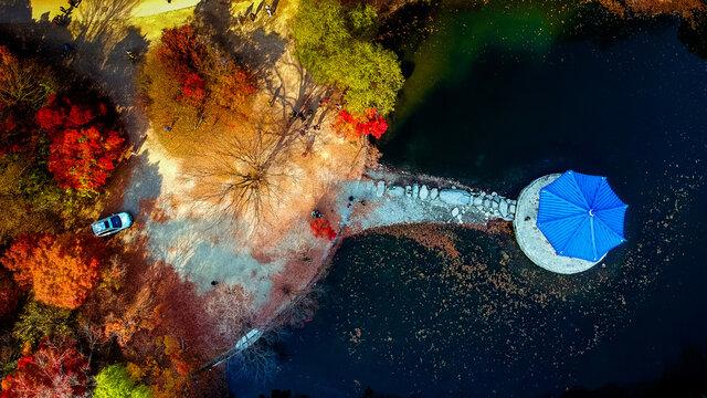 Colorful Aerial View Of Autumn At Naejangsan Natinoal Park, South Korea