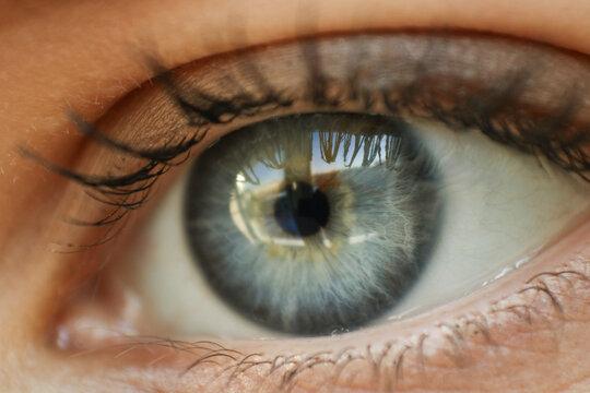 Close-up Of Human Eye