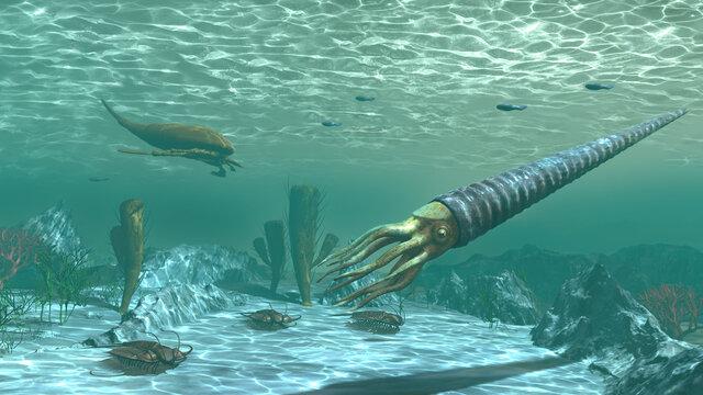 Marine life in the Ordovician period