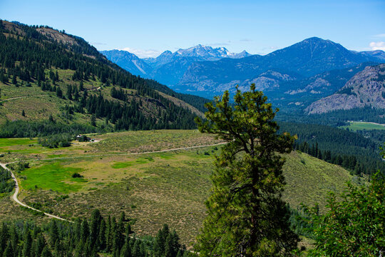 Winthrop, Washington State, green mountain valley and evergreens