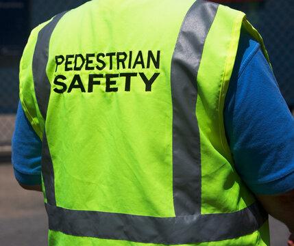 Pedestrian guard