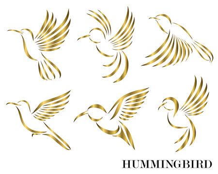 Line art Vector illustration six image set of flying golden hummingbirds. Suitable for making logos