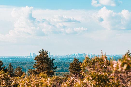 Boston Skyline In The Distance