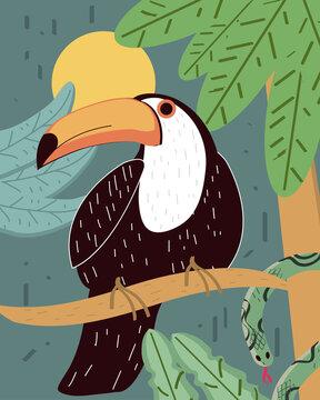 toucan tree branch
