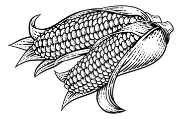 Corn Vegetable Vintage Woodcut Illustration