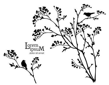 Black silhouette of spring flowering branches and birds.