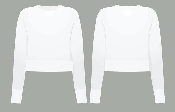 Women white crop sweater. vector illustration