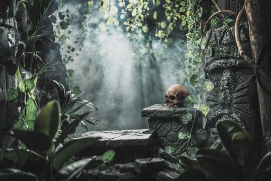 Human skull and ancient ruins in the jungle