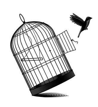 Engraved vintage drawing of a fallen birdcage and a black bird flying away isolated on white