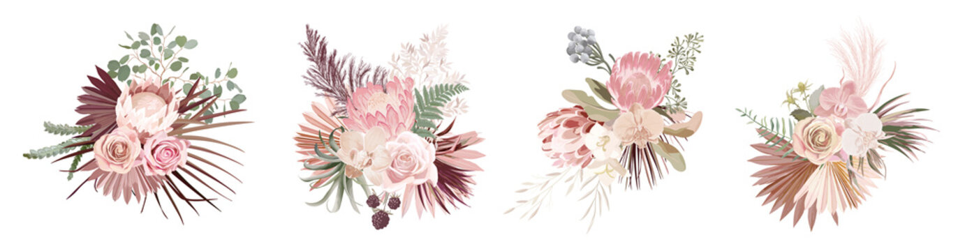 Dried pampas grass, rose, protea, orchid flowers, tropical palm leaves vector bouquets. Pastel watercolor floral