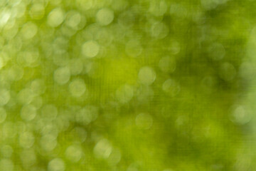 Słoneczna abstrakcje, rozmyte tło, bokeh, natura, park, słońce, blask, wiosna lato