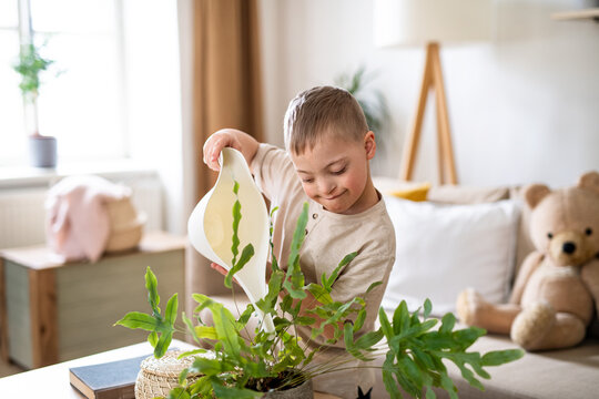 Down syndrome child watering houseplants at home, help with housework.