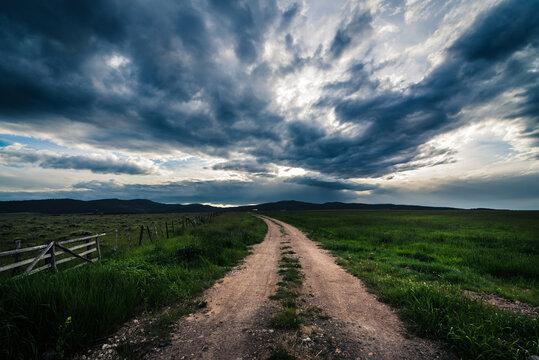 Road in a grassy field.