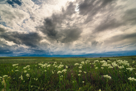 Clouds over a grassy field.