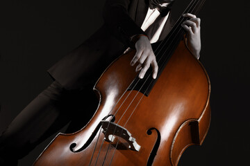 Double bass strings. Hands playing contrabass player