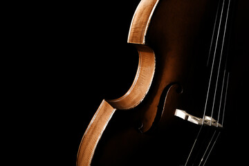 Double bass. Contrabass classical music instrument