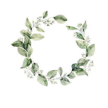 Watercolor floral wreath of greenery. Hand painted frame of green eucalyptus leaves, forest fern, gypsophila isolated on white background. Botanical illustration for design, print