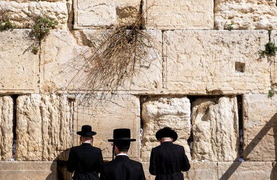 Undefined ultra-orthodox jewish persons prays next to Western Wall in Jerusalem. Israel