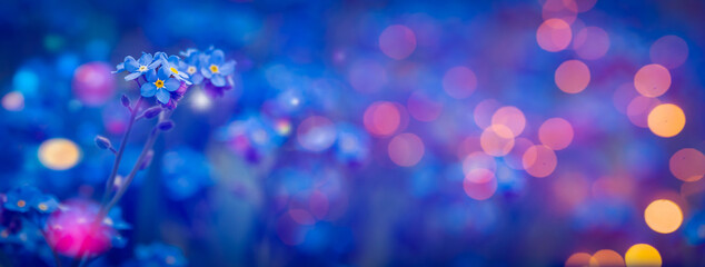 Fototapeta Beautiful abstract background with spring flowers  obraz