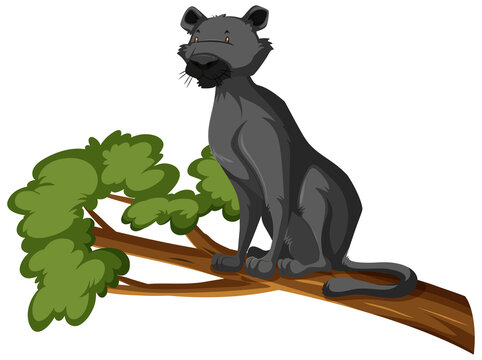 Black Panther on a branch isolated white background