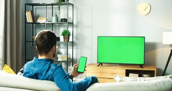 Rear of Caucasian young man in glasses sitting on couch in living room at home watching TV with green screen and typing on smartphone with chroma key browsing online. Social network, tech concept