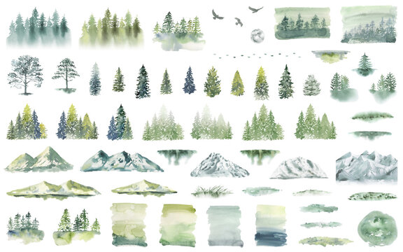 Watercolor Forest tree illustration. Mountain landscape. Woodland pine trees. Green Forest.
