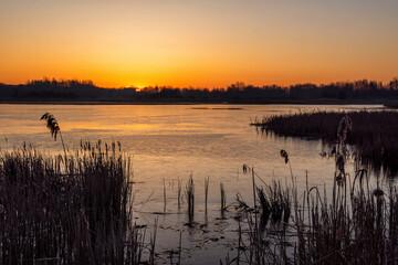 Wiosenny poranek z przymrozkiem, Podlasie, Polska