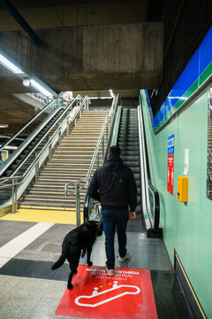 Blind man walking on escalator with guide dog