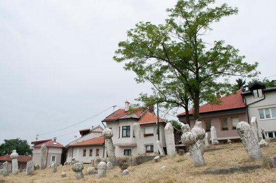Tombs and Houses in Sarajevo