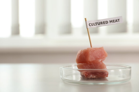 Pieces of raw cultured meat with toothpick label in Petri dish on white table indoors, space for text