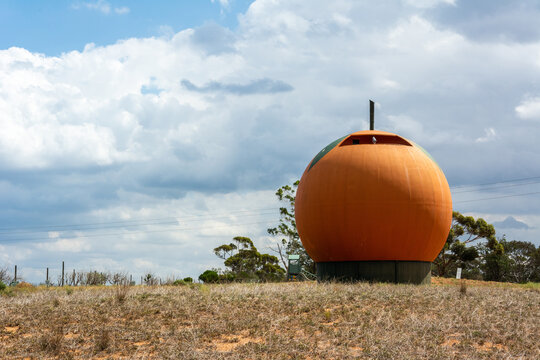 Berri, South Australia, Australia - March 13, 2017. The Big Orange in Berri, SA. Located in the South Australian Riverland, the Big Orange was designed by Adelaide-based architect John Twopenny.