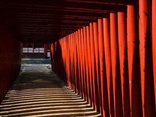 Red torii gates at a Shinto shrine in Japan