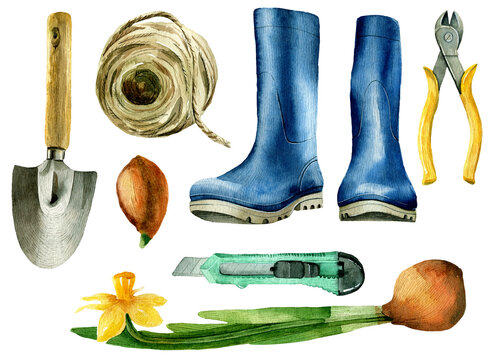 watercolor set with cottage supplies, blue boots, shovel and daffodil