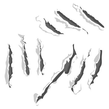Claw scratches vector set isolated on a white background.