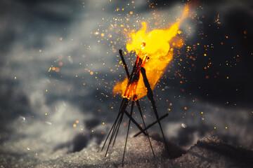 Obraz campfire in the forest - fototapety do salonu